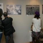 Presentación Exposición Beleza Oculta no Museo Juanjo Linares de Ordes